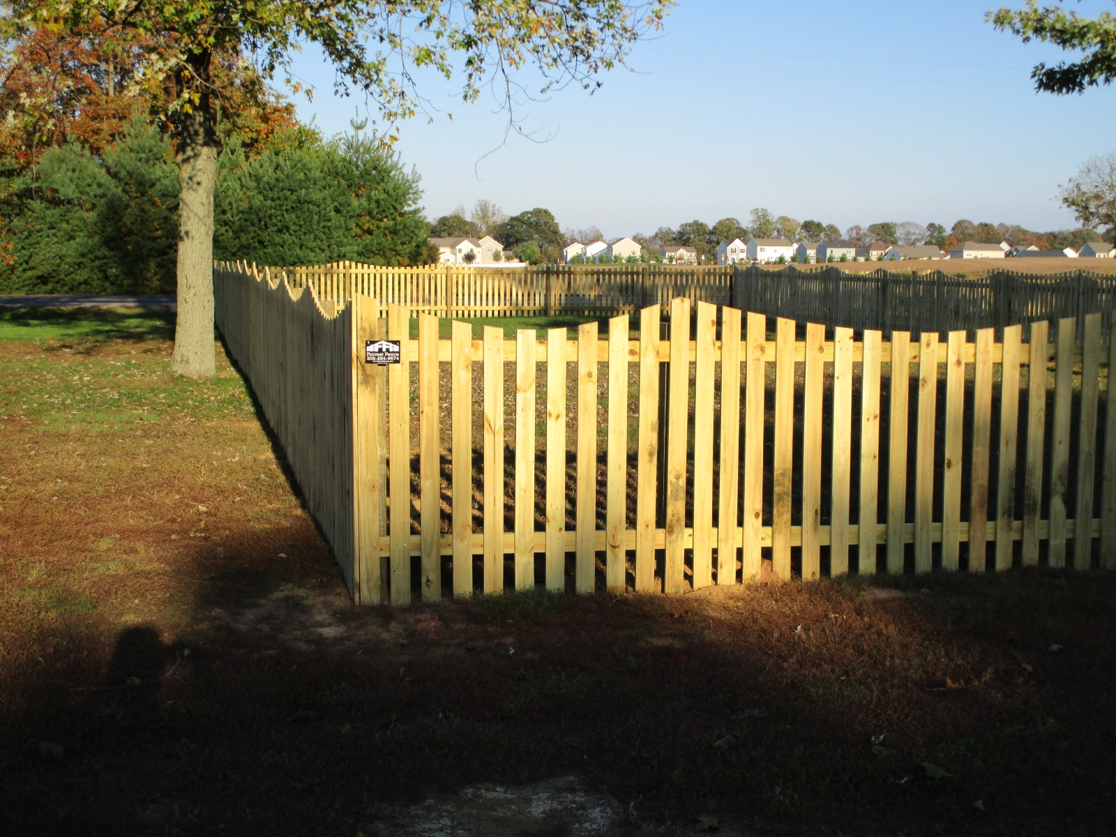 115_4ft-syp-scalloped-picket-fence Wood - Forrest Fencing